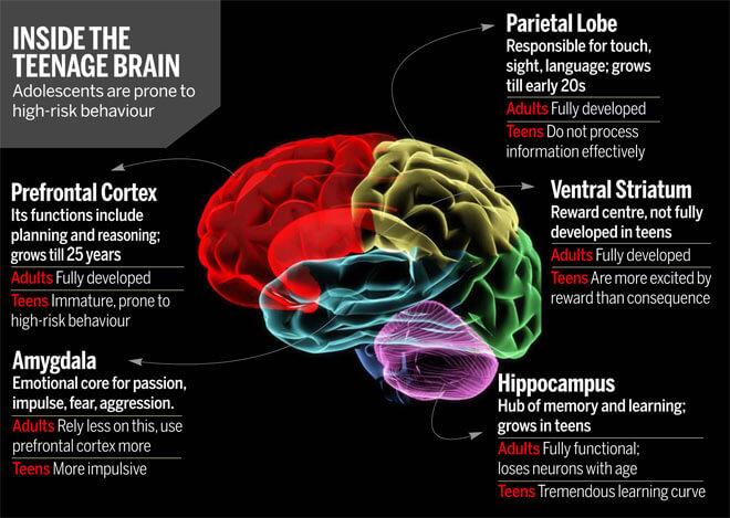 teenagerské obdobie mozog pekelná trojica
