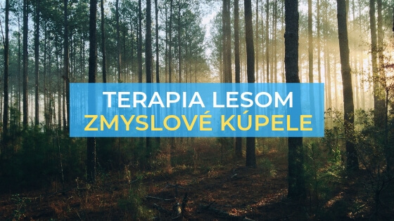 terapia lesom prírodná liečba zmyslové kúpele